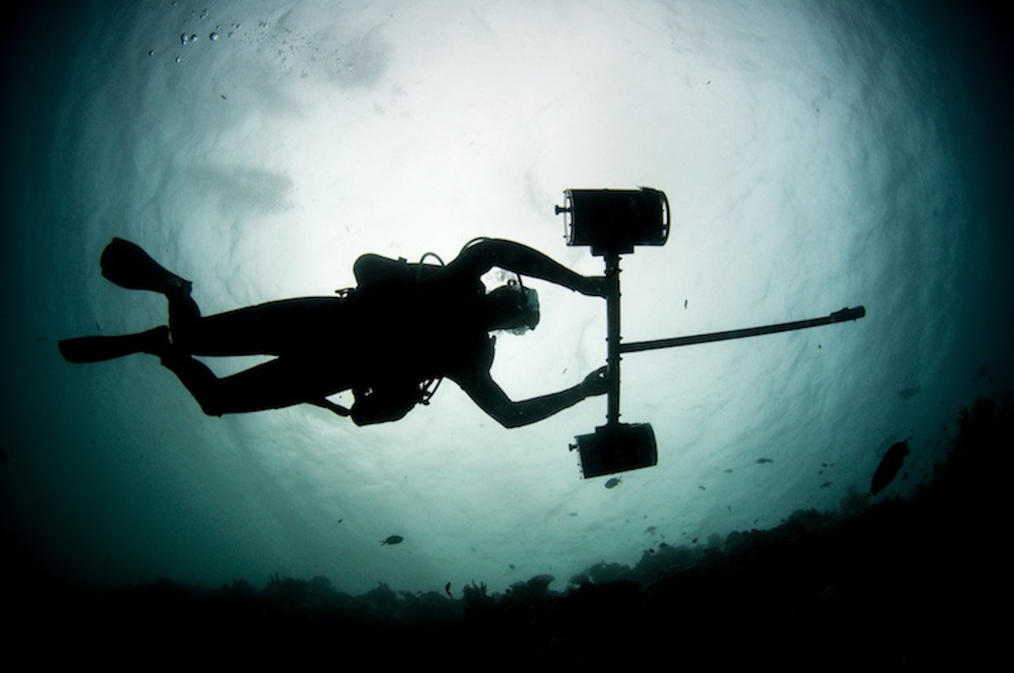 stereo-video, research, marine science, education