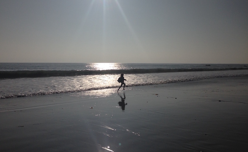 conservation, marine science, education, ocean literacy