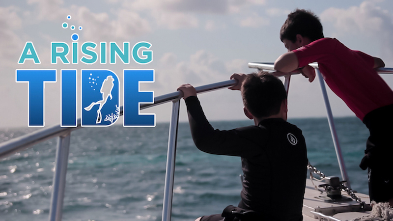 a rising tide, tides, education, scuba, diving, marine, science, conservation