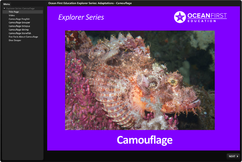 Free Explorer Series: Camouflage