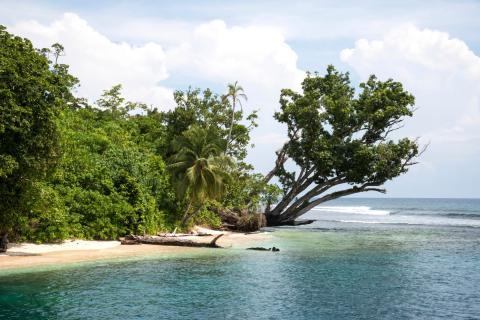 6-8 Grade Solomon Islands