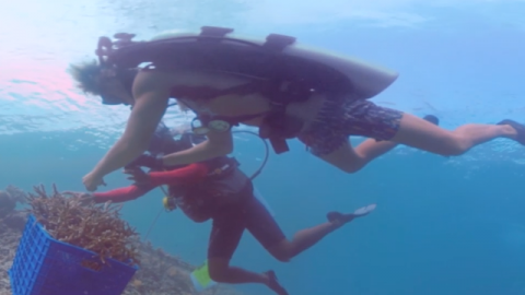Saving the Reef - 4th Grade