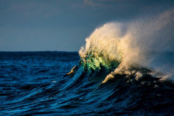 A Dynamic Ocean